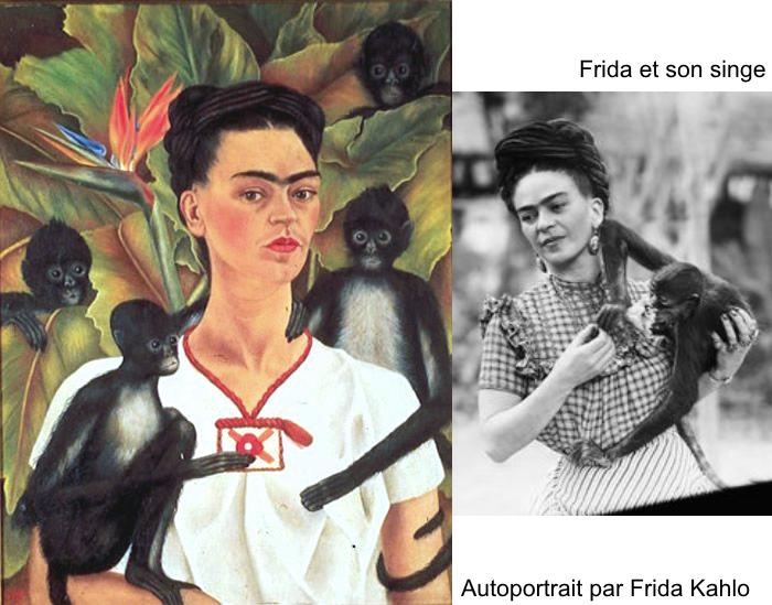 frida-singes